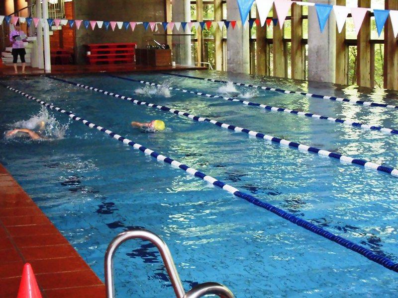 小学校水泳記録会